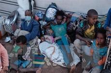 Ethiopia: Hơn 2 triệu người phải di tản do xung đột tại Tigray