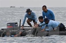 Việt Nam chia buồn với Indonesia về vụ máy bay Sriwijaya Air gặp nạn