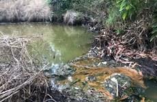 Đồng Nai: Kiểm tra, xử lý Công ty Cù Lao Xanh gây ô nhiễm môi trường