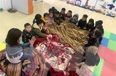 Nhiệt độ xuống thấp, hơn 400 trường ở Sơn La cho học sinh nghỉ học