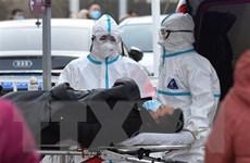 Trung Quốc, Anh và Bồ Đào Nha ghi nhận nhiều ca nhiễm mới COVID-19