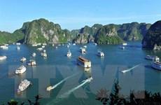 Bắt giữ nhóm đối tượng cưỡng đoạt tài sản trên Vịnh Hạ Long