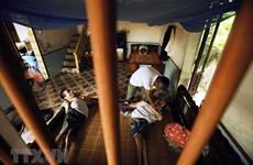 Khắc phục những hậu quả do chất độc da cam gây ra tại Việt Nam
