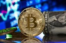 Đồng tiền điện tử Bitcoin lần đầu tiên vượt ngưỡng 49.000 USD