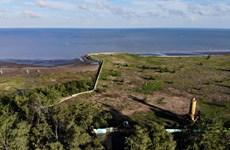 Lập quy hoạch chi tiết tỷ lệ 1/500 khu đô thị du lịch lấn biển Cần Giờ