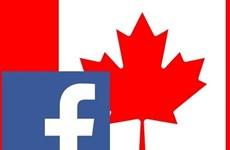 Facebook khẳng định sẵn sàng trả phí cho các hãng tin của Canada