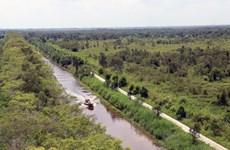 Khám phá rừng tràm, đất than bùn tại Vườn quốc gia U Minh Thượng