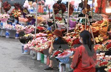 [Photo] Các cửa hàng hoa tươi ở Hà Nội ế ẩm, ảm đạm trước ngày 8/3