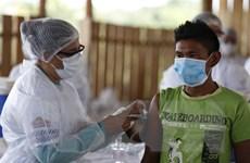 TASS: Hơn 300 triệu người trên toàn cầu đã được tiêm vaccine COVID-19