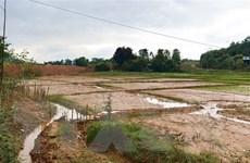Yên Bái: Người dân bức xúc vì bùn đất từ công trình tràn vào ruộng