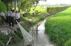 Hóa giải thách thức, phát triển bền vững Đồng bằng sông Cửu Long