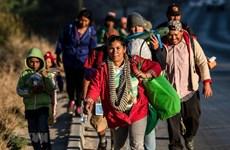 Mexico tăng cường truy quét người di cư từ các nước Trung Mỹ