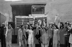 Dấu ấn tuổi trẻ trên công trường Nhà máy Thủy điện Hòa Bình