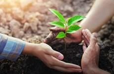 Học viện Phật giáo Việt Nam hưởng ứng sáng kiến trồng 1 tỷ cây xanh
