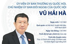 [Infographics] Ủy viên UBTVQH, Chủ nhiệm Ủy ban Đối ngoại Vũ Hải Hà