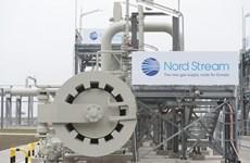 Mỹ và Đức bất đồng về dự án đường ống khí đốt Dòng chảy phương Bắc 2