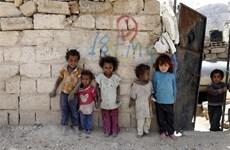 HĐBA thông qua nghị quyết bảo vệ người dân tại các khu vực xung đột