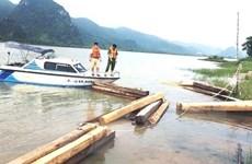 Quảng Bình: Phát hiện thuyền chở 42 hộp gỗ trái phép trên sông Gianh