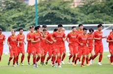 Honda vẫn tài trợ chính cho các đội tuyển bóng đá quốc gia Việt Nam