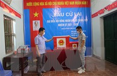 Hà Nội xử lý sai phạm nghiêm trọng trong bầu cử HĐND xã Tráng Việt