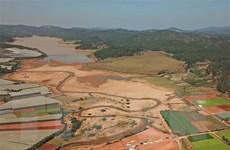 Lâm Đồng: Đề xuất đầu tư 130 tỷ đồng để nạo vét hồ Đan Kia