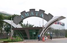 Đồng Nai: Đề nghị tạm dừng hoạt động một công ty trong KCN Amata