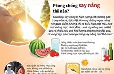[Infographics] Những cách để phòng, chống say nắng trong mùa Hè