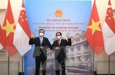 Bộ trưởng Ngoại giao Bùi Thanh Sơn hội đàm với Ngoại trưởng Singapore