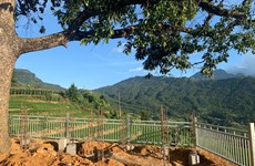 Lào Cai: Yêu cầu tạm dừng bêtông hóa điểm ngắm cảnh ở Y Tý