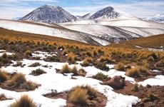 Chile giải cứu 27 người di cư mắc kẹt trong tuyết trên dãy núi Andes