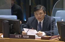 Việt Nam kêu gọi cộng đồng quốc tế duy trì hỗ trợ nhân đạo cho Syria