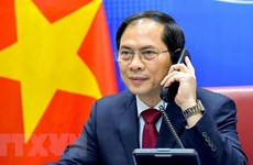 Bộ trưởng Bùi Thanh Sơn điện đàm với Bộ trưởng Ngoại giao Na Uy