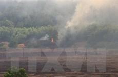 Cháy rừng ở Thừa Thiên-Huế có nguy cơ ảnh hưởng vận hành an toàn điện