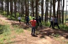 Lâm Đồng: Xử lý đối tượng lấn chiếm đất rừng, đuổi đánh đoàn kiểm tra