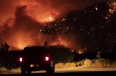 Canada điều quân đội hỗ trợ khống chế cháy rừng, sơ tán người dân