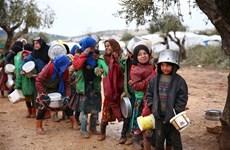 Hội đồng Bảo an gia hạn việc vận chuyển hàng cứu trợ cho Syria