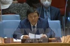 Việt Nam thúc đẩy bảo vệ nhân viên nhân đạo tại các điểm nóng xung đột