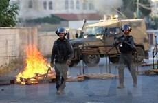 270 người Palestine bị thương trong các cuộc đụng độ tại Bờ Tây