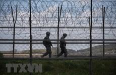 Mỹ-Hàn Quốc tổ chức tham vấn cấp cao về vấn đề Triều Tiên
