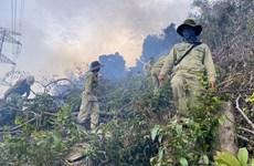 Cháy rừng gây sự cố nghiêm trọng đường dây 500 kV Dốc Sỏi-Pleiku 2