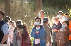 Cảnh báo thủ đoạn lừa đảo chiếm đoạt tiền trợ cấp COVID-19 ở Australia