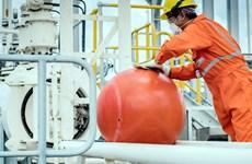 Bà Rịa-Vũng Tàu: Sắp bảo dưỡng Nhà máy xử lý khí Nam Côn Sơn