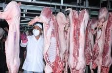 Nhiều cơ sở giết mổ gia súc, gia cầm ở Hà Nội tạm dừng hoạt động