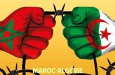 Tại sao Algeria cắt đứt quan hệ với nước láng giềng Maroc?
