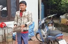 Điện Biên: Bắt giữ 2 đối tượng vận chuyển trái phép động vật hoang dã