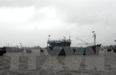 Bão số 5 suy yếu thành áp thấp nhiệt đới trên biển Đà Nẵng-Bình Định