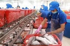 Xuất khẩu thủy sản giảm mạnh trong thời gian giãn cách xã hội