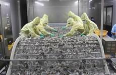 Bàn giải pháp phục hồi sản xuất nông, thủy sản ở Nam Bộ