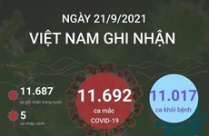 [Infographics] Thêm 11.017 bệnh nhân COVID-19 được công bố khỏi bệnh