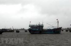 Vùng áp thấp trên Biển Đông có khả năng mạnh thành áp thấp nhiệt đới